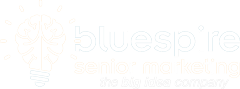 Bluespire Marketing